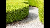 Adding a fence can help make your yard private, beautiful