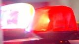 Woman killed in single-car crash I-75