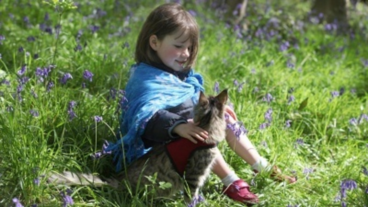 Therapy cat helps 6 year old artist with autism