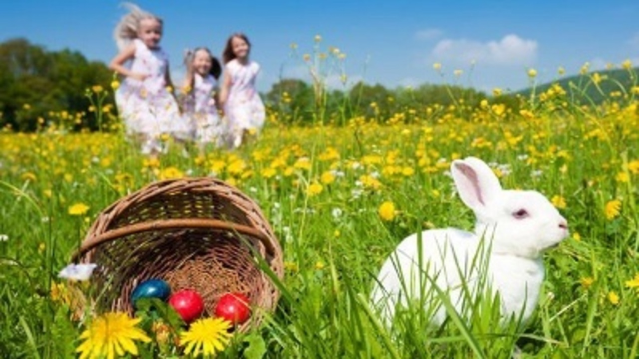 Easter Tradition Ideas: make Resurrection Cookies-have an Easter basket scavenger hunt (for the older kids)-have the Easter bunny leave foot prints (paper cutouts) from the younger kids bedrooms around the house leading to the Easter baskets.
