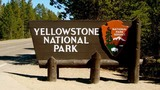 Yellowstone National Park worker falls to death