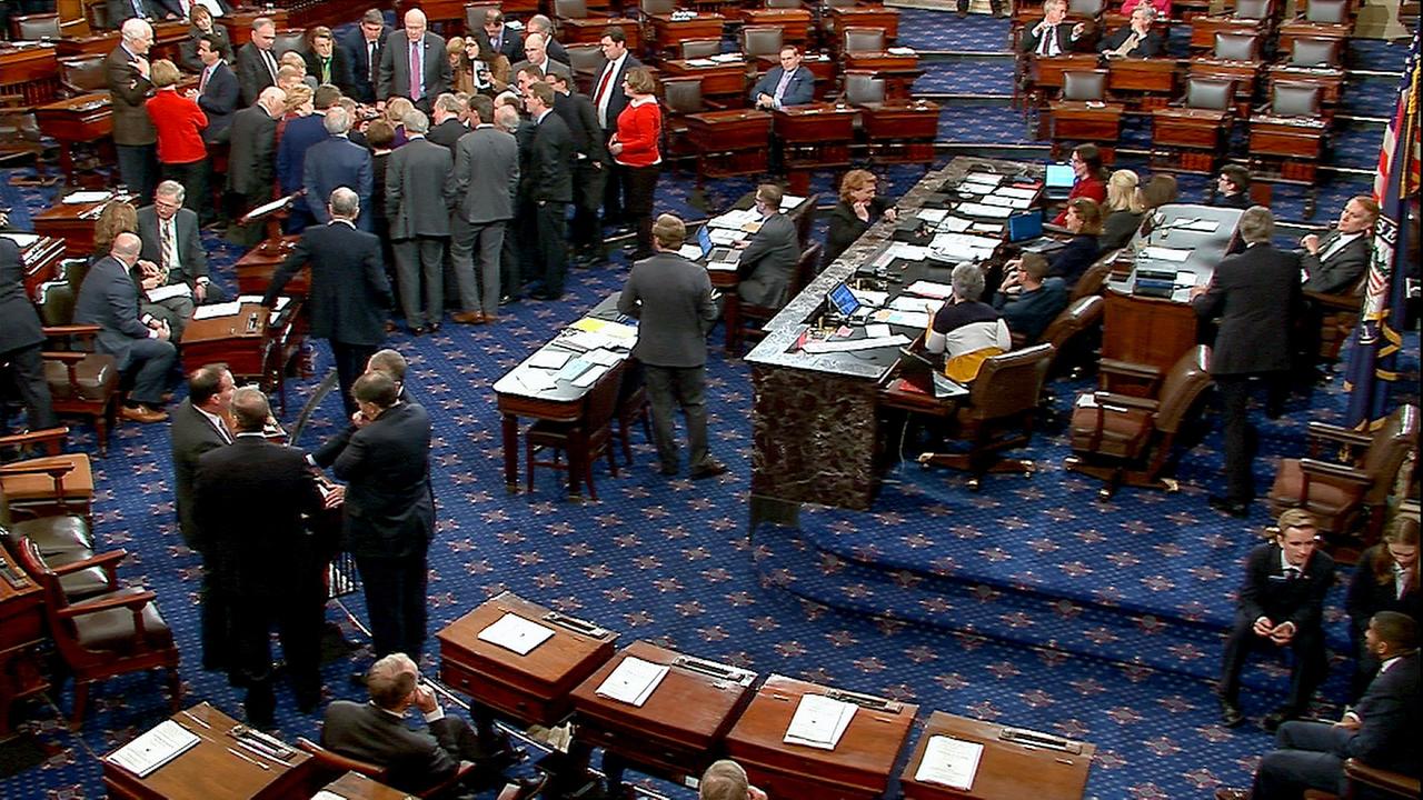 Senate formally opens immigration debate